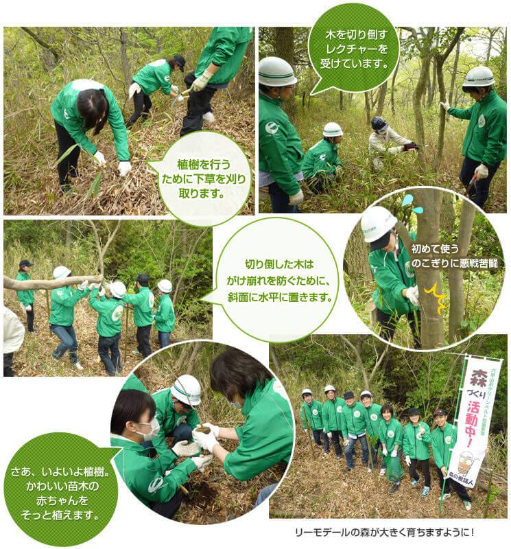 第1回リーモ・デールの森づくり活動(2014年4月16日)