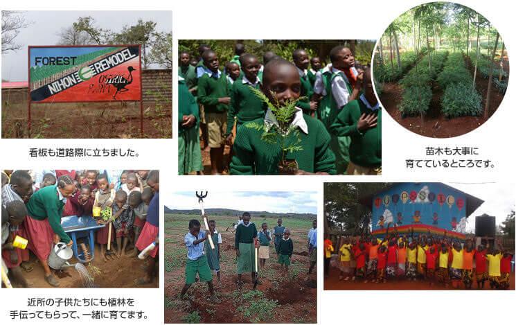 ケニア共和国 リーモ・デールの森づくり