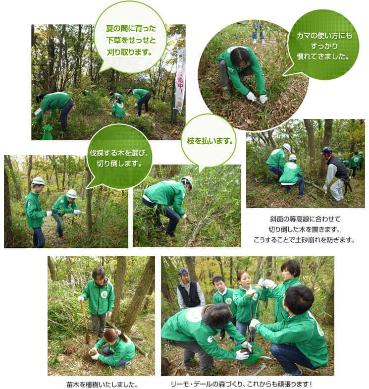 第2回リーモ・デールの森づくり活動