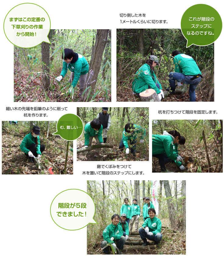 第3回リーモ・デールの森づくり活動