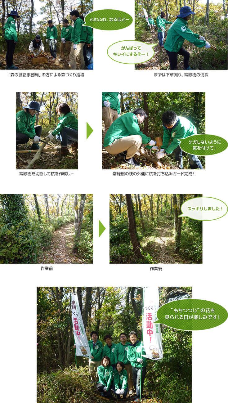 第6回リーモ・デールの森づくり活動