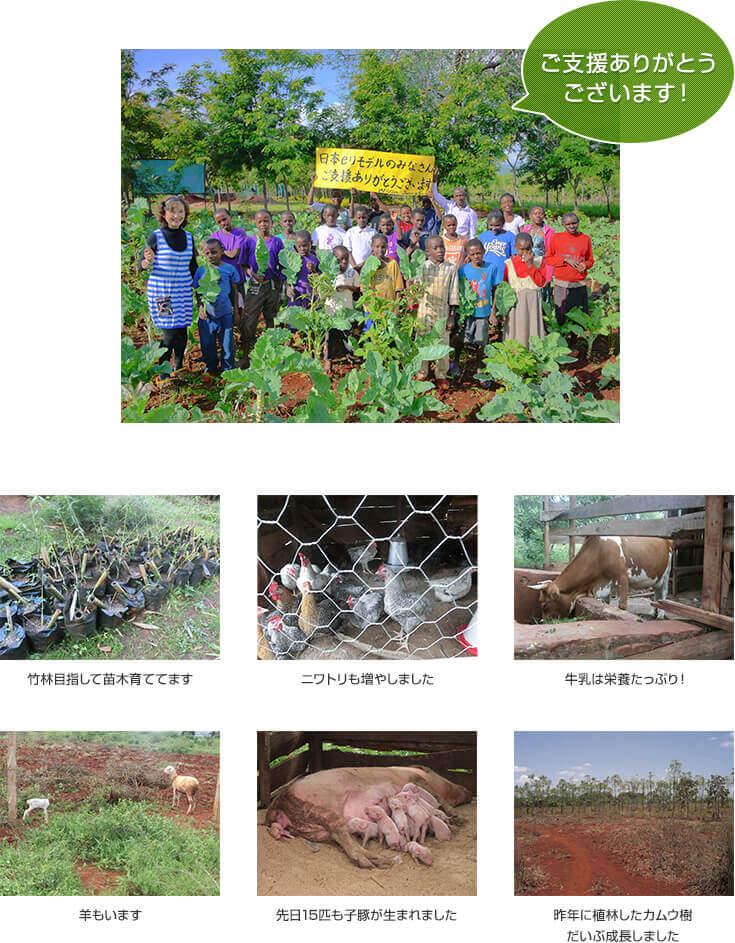 環境保全ACEF(アフリカ児童教育基金)のHIV孤児支援