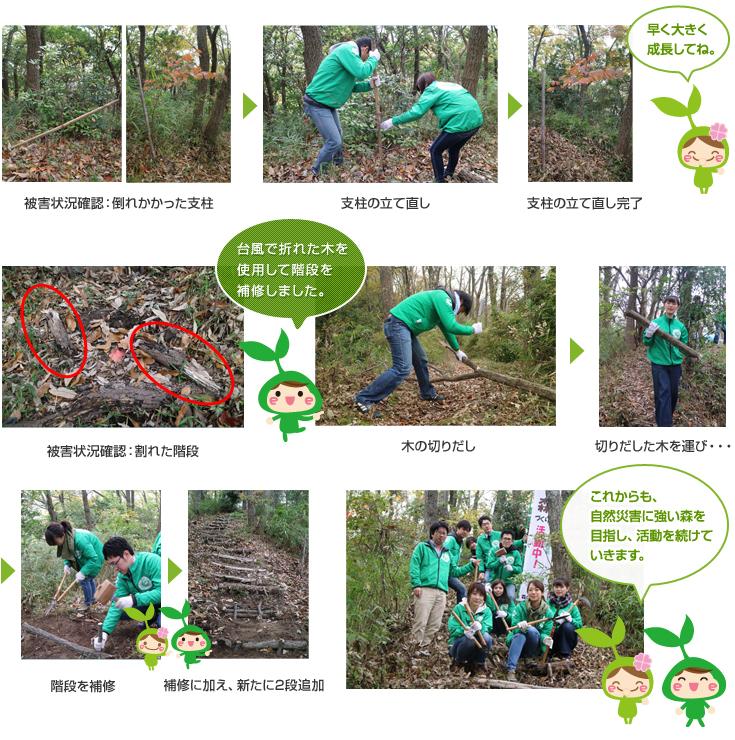 第8回リーモ・デールの森づくり活動