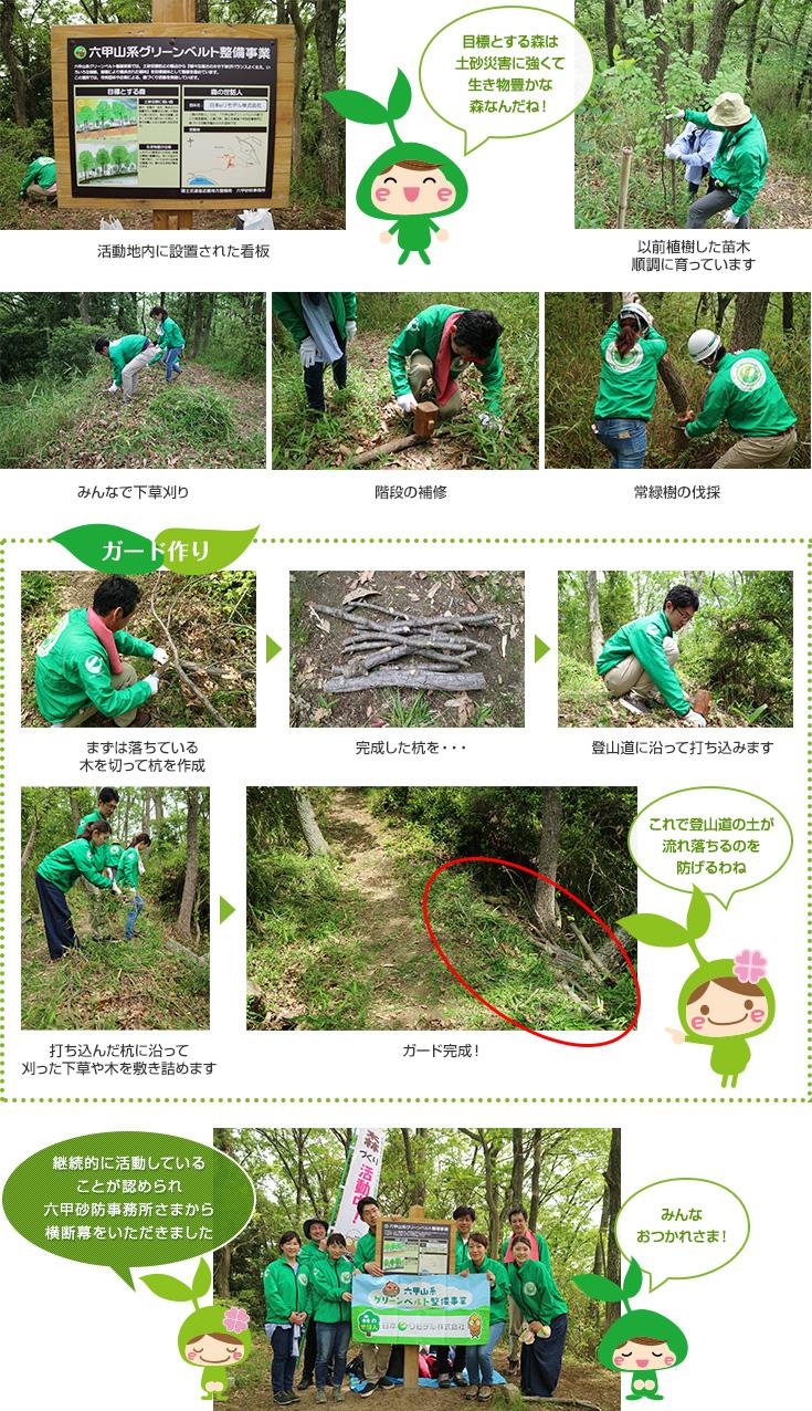 第9回リーモ・デールの森づくり活動