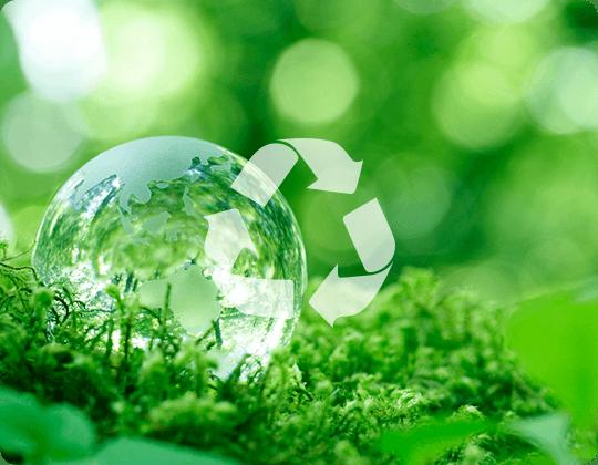 「エコロジー」と「エコノミー」のe