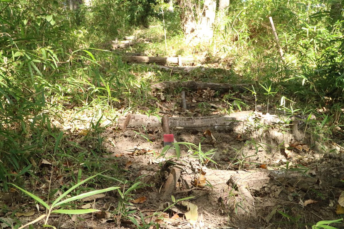 日本eリモデル 第12回森づくり 階段メンテナンス