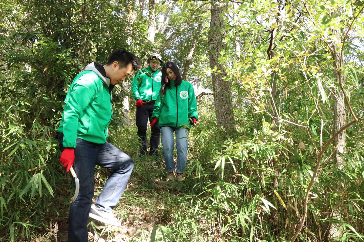 日本eリモデル 第12回森づくり 下草刈り